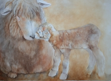 Elaine Young, Mom and Baby Lamb, watercolor, Pacific Rim Art Guild